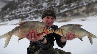 Крупный лещ.Рыбалка на леща зимой.