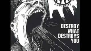 It Really Sucks When - Destroy What Destroys You - Against All Authority