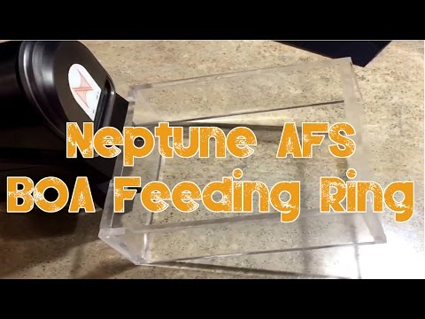 Red Sea Reefer 250 | Neptune AFS (Auto Feeding System) | Building An Obsession Feeding Ring