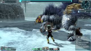 [PSO2] (Hunter) Snow Banther & Banshee Solo