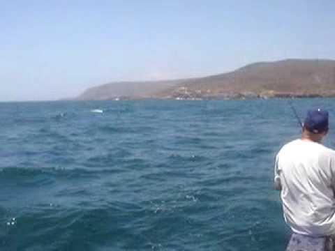 Fishing on the sonny castro erendira baja california youtube for Mexican fishing license
