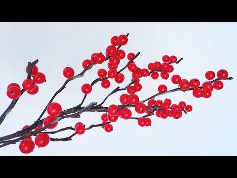 ABC TV   How To Make Winterberry Tree - Craft Tutorial