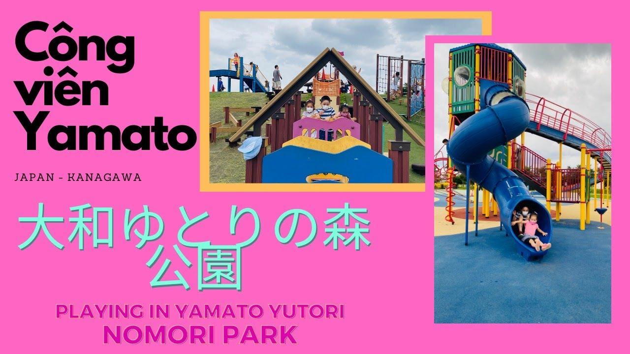 Vui chơi miễn phí Công viên Yamato Yutori No Mori Yokohama