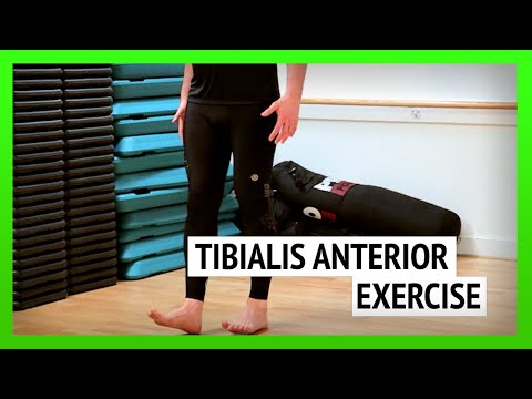 Tibialis Anterior Exercise for Runners [Ep52]