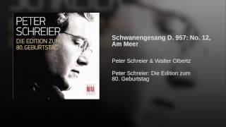Schwanengesang D. 957: No. 12, Am Meer