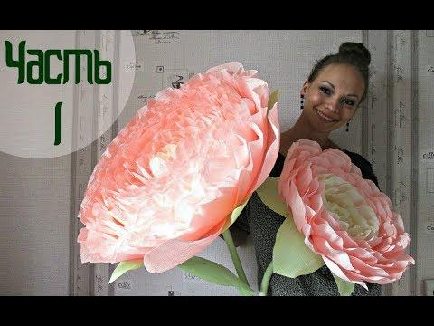 РОСТОВЫЕ ЦВЕТЫ. Огромный цветок ДЛЯ ФОТОСЕССИИ. Часть 1