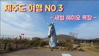 ☆제주도여행☆ #새별헤이요목장 #제주여행 #제주추천장소…