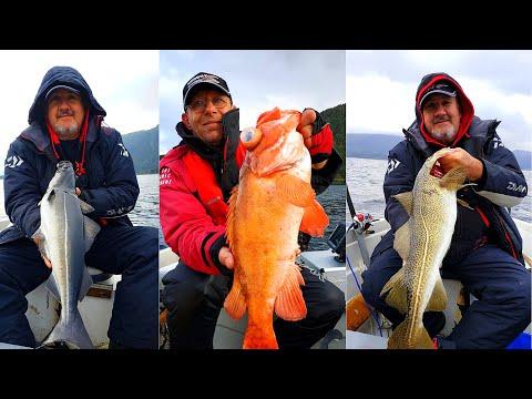 Рыбалка в Норвегии,  треска, красный окунь,  путассу. Рыболовные путешествия.
