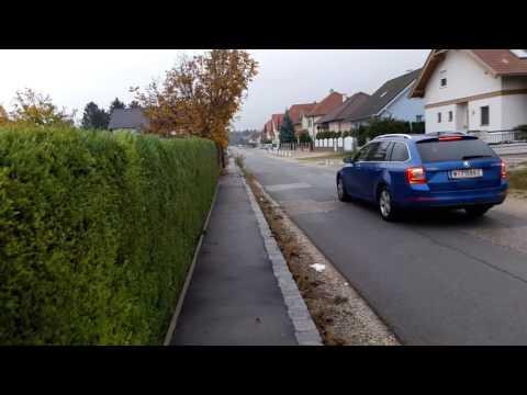 VLOG: Говорим о школах и группе продлённого дня в Австрии