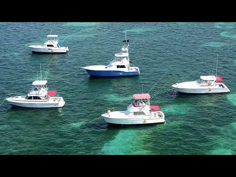 Gone Fishing Punta Cana Charters - Punta Cana Deep Sea Fishing, Dominican Republic