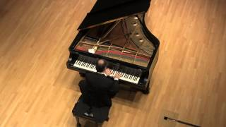 Hamilton Tescarollo: Liszt: Sonata in B Minor