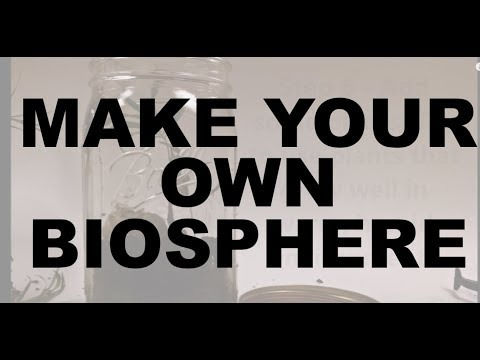 how to make your own self contained biosphere