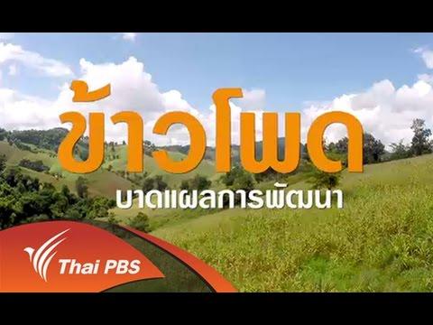 เสียงประชาชน เปลี่ยนประเทศไทย : ข้าวโพด : บาดแผลการพัฒนา (16 ต.ค. 58)
