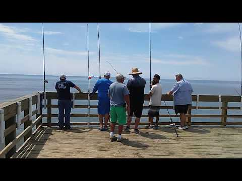 6 20 20 - Fishing Report (With King Skying A Bait) - Seaview Fishing Pier