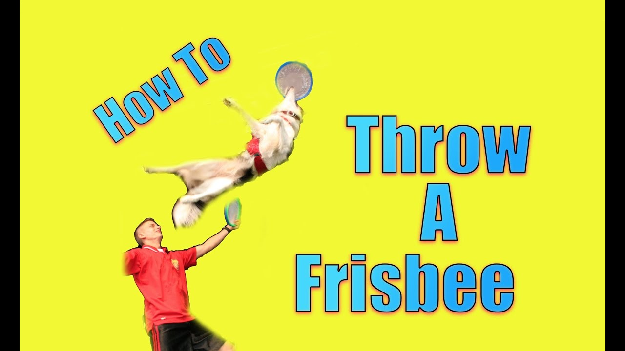 A Revolutionary Way To Throw A Frisbee To Your Dog
