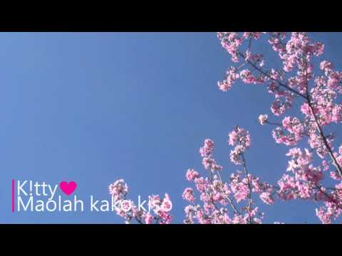 K!tty - Maolah Kako Kiso