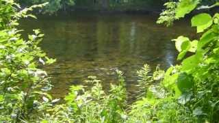 Down Along the Rivers Edge, Mexico Maine. recorded by Sarah M. Dunlop 07/15/13