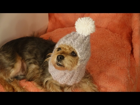Gorro abrigador para perros crochet/cozy hats for dogs crochet