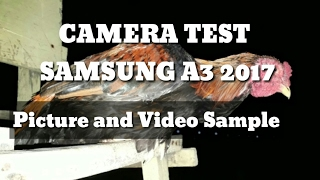 camera test samsung a3 2017 with picture and video sample