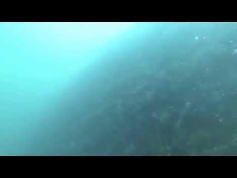 Museum Ship Battleship MISSOURI Hull Cleaning 7-2014