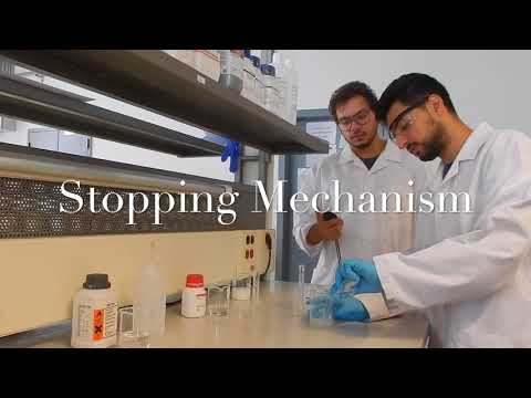 American University of Beirut Chem-E-Car in the Spotlight - 2017 MEPEC