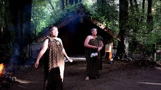 Gambar cover Tamaki Maori Village Rotorua