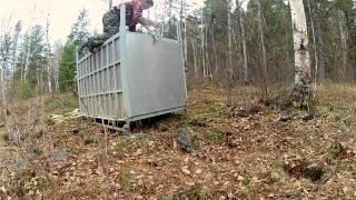 Siberian Tiger Released - GoPro Hero Video : IFAW