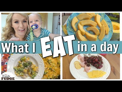 WHAT I EAT IN A DAY || Stay at Home Mom of 4 || The Family Fudge