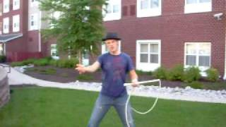 Bullwhip Cracking: the Queensland Crossover