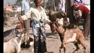 Sagarmatha Samachar 2072-07-03