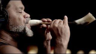 Baixar Ânima - Tribalistas (clipe oficial)