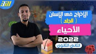 احياء(1) تانيه ثانوى (ترم الثاني) 2020 | الدرس الاول | الإخراج  : مكونات الجلد | الخطة