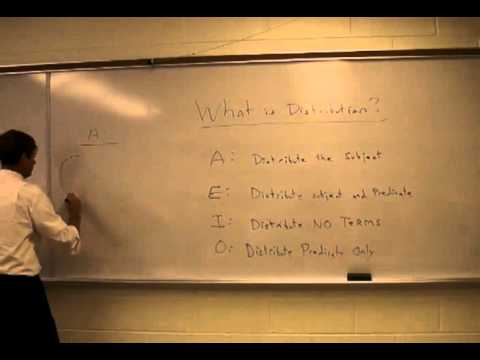 What is Distribution in Categorical Syllogisms?