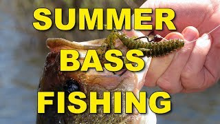 Summer Bass Fishing Techniques and Tips | Bass Fishing
