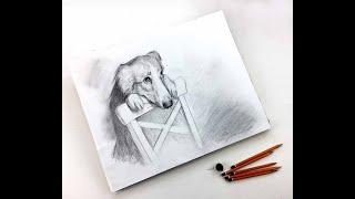 Бесплатный вебинар. Рисунок карандашом «Лучший друг»