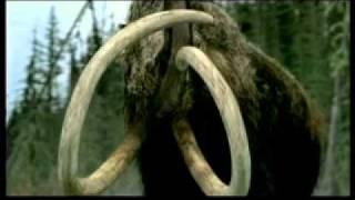 BBC. Прогулки с чудовищами.flv(, 2011-08-10T10:56:46.000Z)