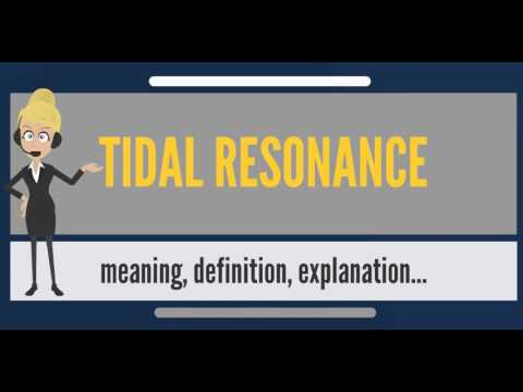 What is TIDAL RESONANCE? What does TIDAL RESONANCE mean? TIDAL RESONANCE meaning & explanation