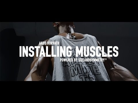 Akos Horvath: Installing Muscles