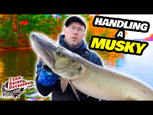 How to Handle a Musky