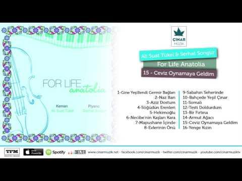 For Life / Anatolia - Ceviz Oynamaya Geldim (Official Lyrics Video)