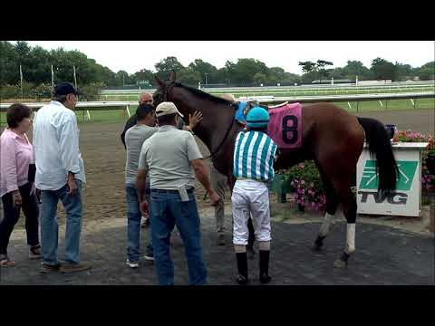 video thumbnail for MONMOUTH PARK 8-23-19 RACE 4
