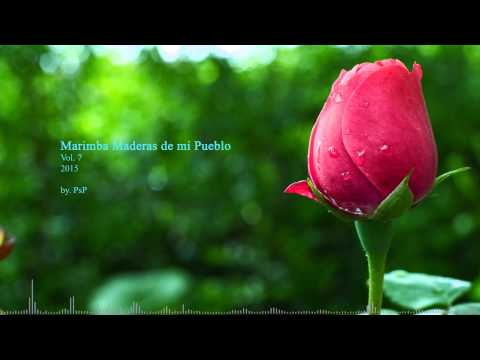 Marimba Maderas de mi Pueblo vol.7 - (2015) HD
