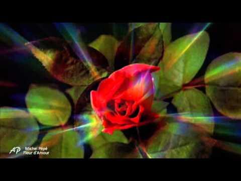 Fleur D Amour Michel Pepe Shazam