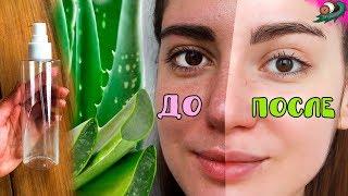 видео Какая маска будет питать кожу лица?
