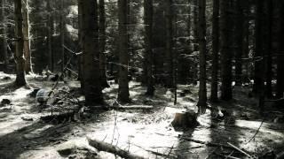 Golden Kanine-Climb official video