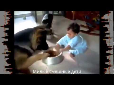 Смешные Дети Лучшие приколы с детьми Funny Kids The best jokes with the children