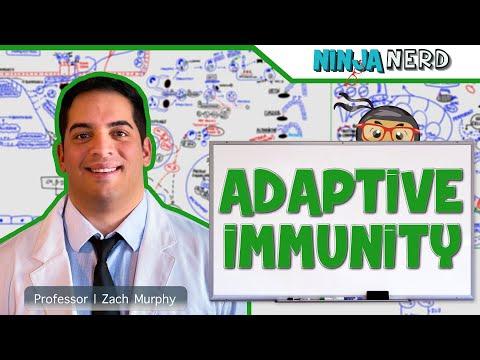 Immunology: Adaptive Immunity