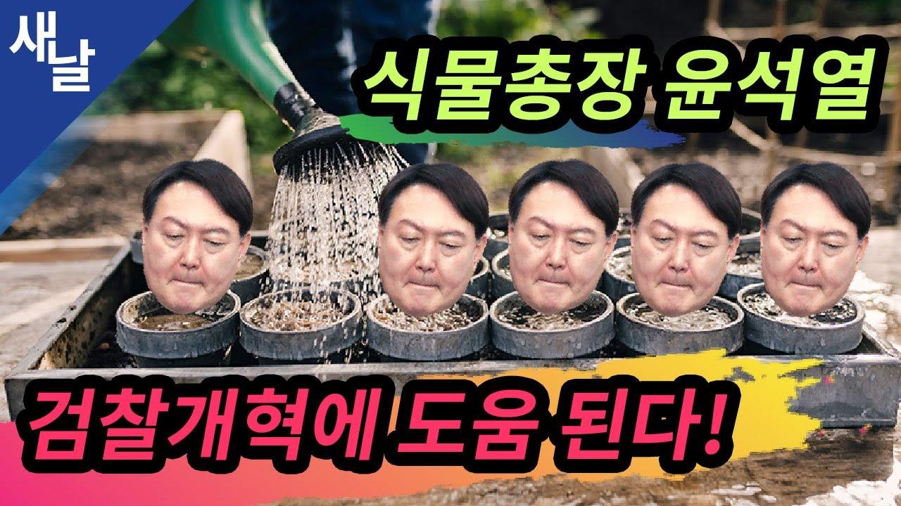 [짤] 식물총장이 된 윤석열, 검찰개혁에 도움 된다!