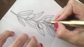 Drawing an olive twig