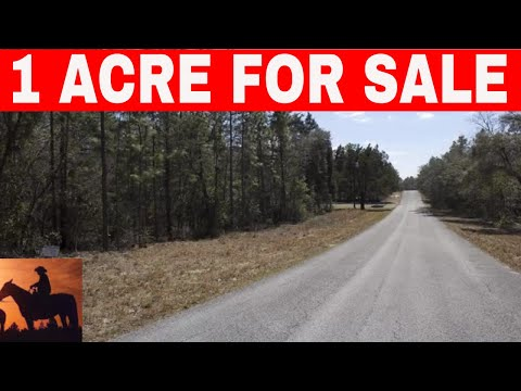 Florida Owner Financed Land 1 Acre For Sale